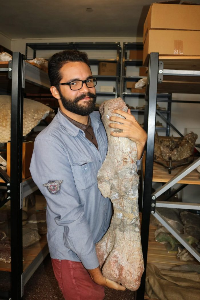Dinossauros: biólogo João Kirmse